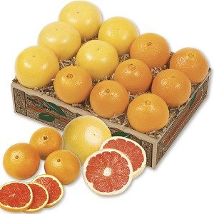 Scarlet Navel Oranges and Grapefruit