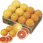Red Navel Oranges and Grapefruit