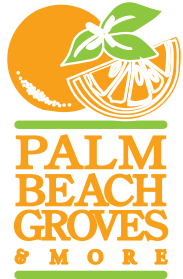 Palm Beach Groves