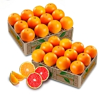 Red and White Seedless Navel Oranges
